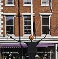 Pumpkin Man by James Ekstrom
