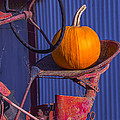 Pumpkin On Tractor Seat by Garry Gay