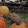 Pumpkin Peepers by Jen  Brooks Art