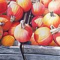 Pumpkins by Constance Drescher