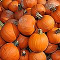 Pumpkins by Diane Lent