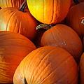 Pumpkins by Joseph Skompski