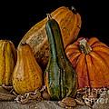 Pumpkins by Mike Santis