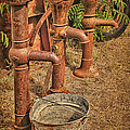 Pumps Gone Dry by Priscilla Burgers