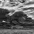 Punakaiki Truman Track #2 - Black And White by Stuart Litoff