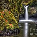 Punch Bowl Falls by Matt Hoffmann