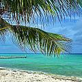 Punta Cana Getaway by Tony Ambrosio