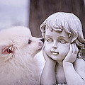 Puppy And Angel  by Bonnie Barry