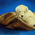 Puppy Glove... by Will Bullas
