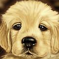 Puppy by Veronica Minozzi