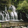 Purakaunui Falls And Tropical by Konrad Wothe