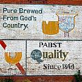 Pure Brewed by Jame Hayes