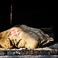 Purina Feed Sack In Loft by Greg Jackson