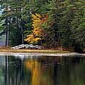Purity Lake by Marcia Lee Jones