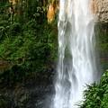 Purlingbrook Falls by Darren Burton
