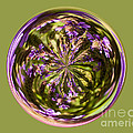 Purpble Wildflower Orb by Darleen Stry