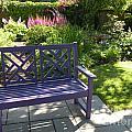 Purple Bench by Nancy Taylor Major