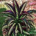 Purple Cactus II by Saundra Myles