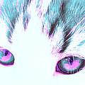 Purple Cat Eyes by Anita Lewis