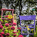 Purple Chair by Ray Congrove