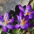 Purple Crocus by Kathryn Meyer