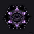 Purple Fantasy Flower by Judi Suni Hall