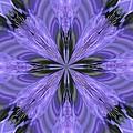 Purple Fantasy by Lena Photo Art