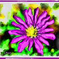 Purple Flower by George Rossidis