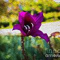 Purple Flower In Oil by Tony Amat
