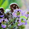 Purple Flowered Angel by David Fishter