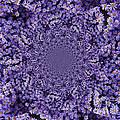 Purple Flowers Kaleidoscope by Carol Groenen