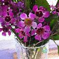 Purple Flowers by Linda Woods