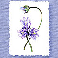 Purple Flowers Serenade Botanical Impressionism by Irina Sztukowski