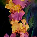 Purple Gold Irises  by George Tuffy