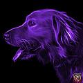 Purple Golden Retriever - 4047 F by James Ahn