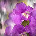 Purple Impression by Jenny Rainbow