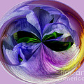 Purple Iris Orb by Scott Hervieux