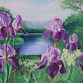 Purple Irises At Catfish Corner by Sherri Anderson