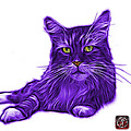 Purple Maine Coon Cat - 3926 - Wb by James Ahn