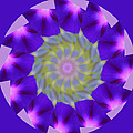 Purple Morning Glory Kaleidoscope by Kristy Jeppson