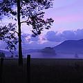 Purple Mountain Majesty by Roe Rader