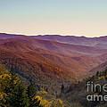 Purple Mountains Majesty by Dawn Gari
