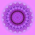 Purple Pink Kaleidoscope by MTBobbins Photography