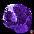 Purple Pitbull Dog 7769 - Bb - Fractal Dog Art by James Ahn