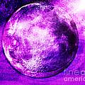 Purple side of the moon