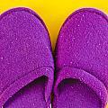 Purple Slippers by Tom Gowanlock