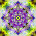 Purple Star Yantra Mandala by Susan Bloom