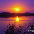 Purple Sunset by Lori Tordsen