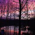 Purple Sunset On Smith Mt. Lake by Jennifer Lamanca Kaufman