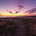 Purple Sunset Sky At The Beach by Trevor Nicodemo
